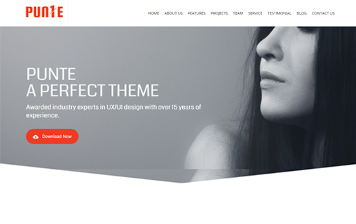 Responsive One Page Premium WordPress Theme