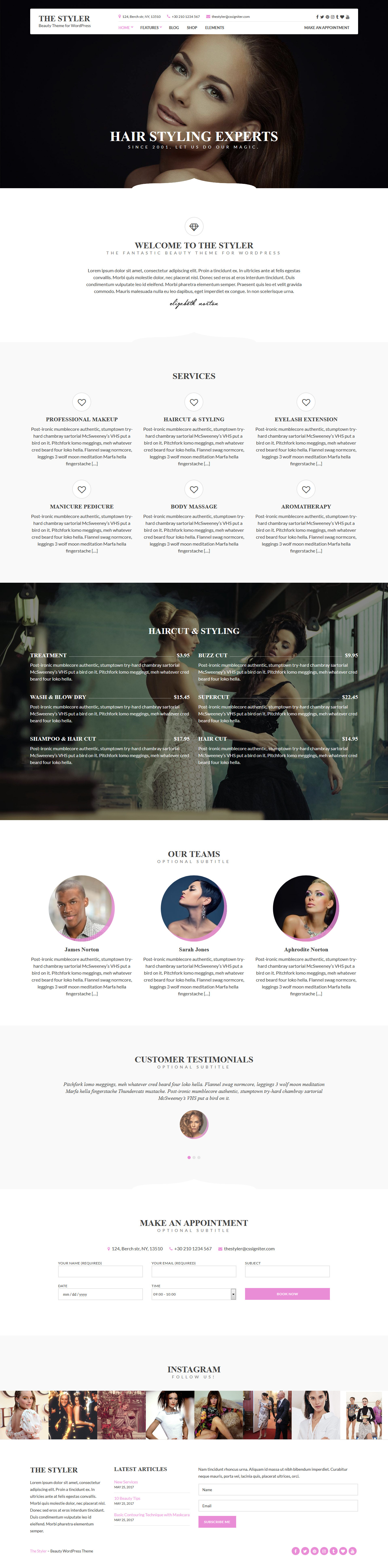 The Styler - Best Business WordPress Theme