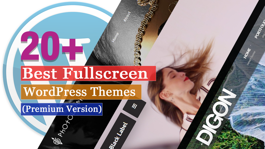 20+ Best Fullscreen WordPress Themes